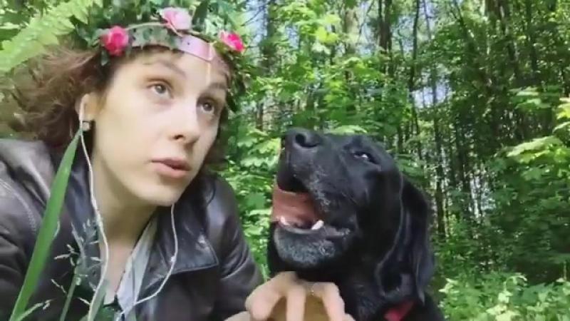 Ирина Горбачева на прогулке с собакой » Freewka.com - Смотреть онлайн в хорощем качестве