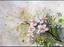 С 8 Марта Акварель Рисуем ветку вишни Негатиа Cherry Tree Branch