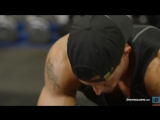 Full-body Hybrid Conditioning Workout True Muscle Trainer 9 Weeks To Elite Fitness
