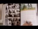 Антология The Beatles