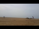 Alex with training kite