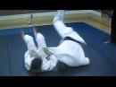 Billy Doak Shihan At The Hankyo Kempo Jujutsu Renmei - Basho 2004 Martial Arts Seminar 2