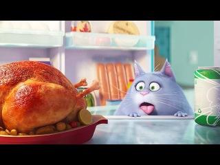 Тайная Жизнь Домашних Животных Полный Мультик 2016 HD 720