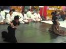 Komei Juku Muso Jikiden Eishin ryu Iaijutsu Demo mixed with Aikido