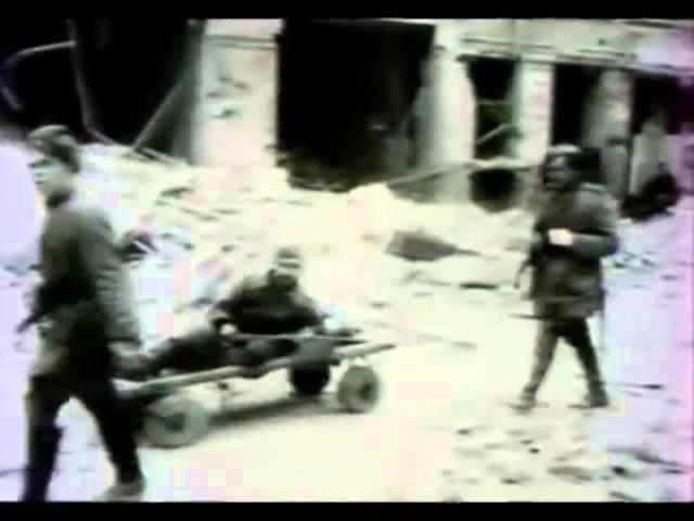 Собаки санитарной службы в условиях городских боев. Истребители танков