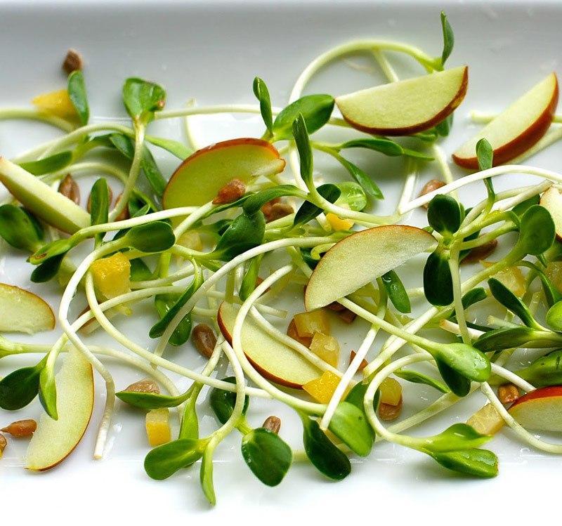 ZGWoYPJKmJo - Биогенная еда