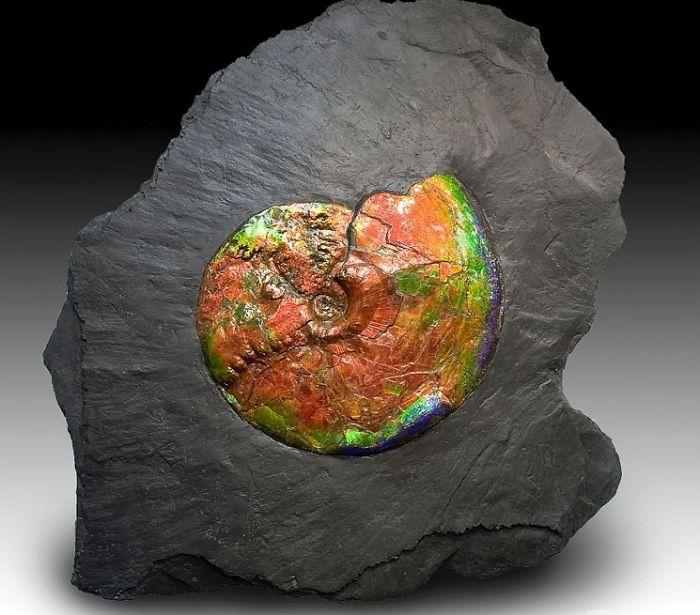 7z eflTb92E - 25 потрясающе красивых и редких камней