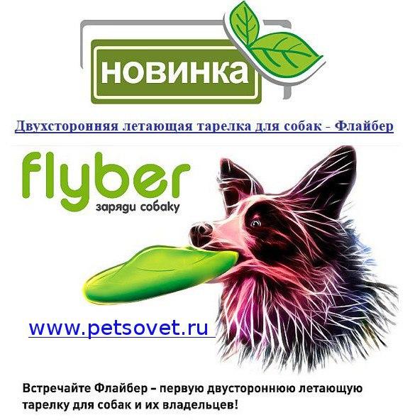 ПетСовет - зоотовары с доставкой по России, акции, скидки 4bdewJzs8wI