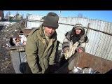 Как люди едят из помойки  Фильм Россия 2017 год
