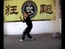 Ураганный бокс Hurricaneboxing Мастер Ши Вэньчжо Shi Wenzhuo Проработка тела