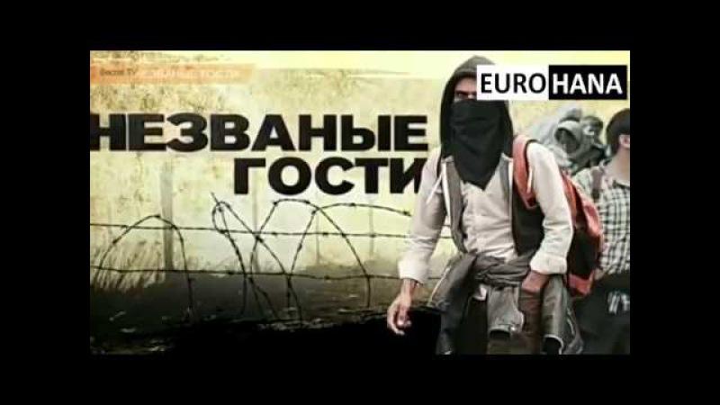Беженцы захватят всю Европу Непрошеные гости