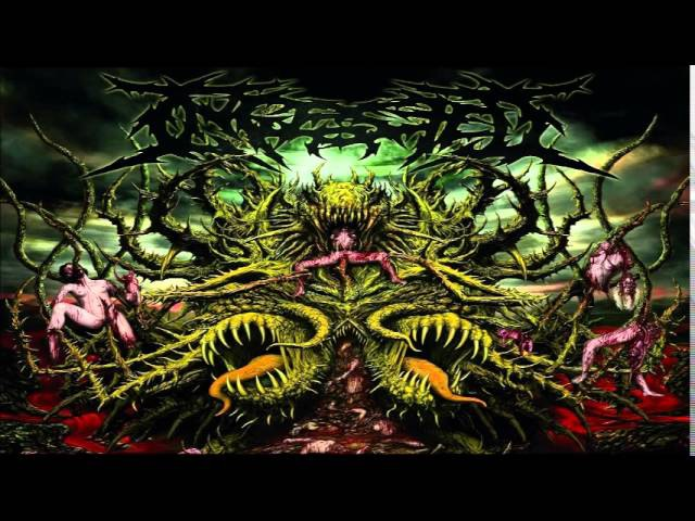 Ingested Surpassing the Boundaries of Human Suffering FULL ALBUM