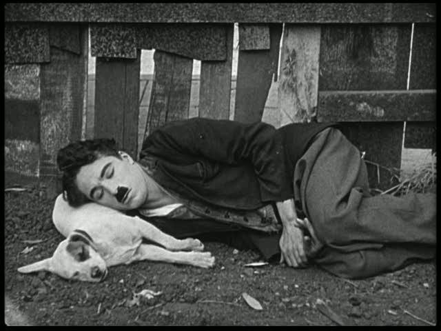 Собачья жизнь х.ф.1918 г. Чарли Чаплин