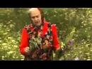 Краткое описание самых популярных лечебных трав (видео) - Зайцева Е.Ф.