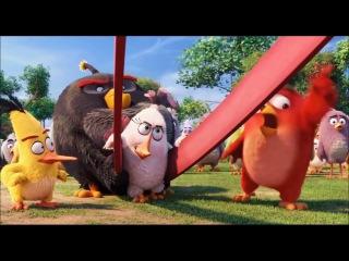 THE ANGRY BIRDS MOVIE Angry Birds Toons 2016Энгри Бердс Злые птички