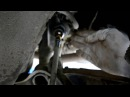 Hyundai Accent 2. Замена рулевых тяг и рулевых наконечников