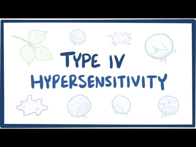 Type IV hypersensitivity (cell-mediated) - causes, symptoms, treatment pathology