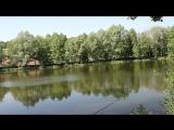 чудные рыбалки