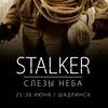 STALKER 5 / Слезы неба