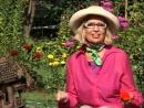 Бегония в саду советы по выращиванию и уходу цветов.mp4