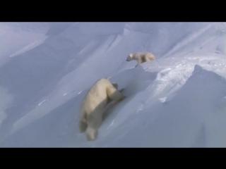 BBC:Планета Земля - №1.От полюса до полюса (From Pole to Pole)