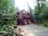 Timber jack 1110 D