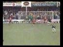 Paul Scholes' Volley - 1999
