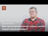 Неконтролируемый стресс - Дмитрий Жуков