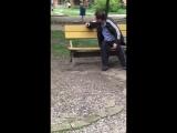 Как поступать с пьяными на детских площадках