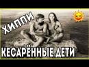 ХИППИ - ДЕТИ КЕСАРЕВЫХ СЕЧЕНИЙ.