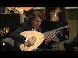 Antonio Vivaldi - Lute Guitar Concerto D major Luca Pianca - Il Giardino Armonico