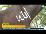 Акрам.Знак бога Конь с надписью Аллах в Кыргызстане.