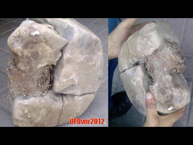 New evidence of the former Wen Ming: photographer discovered transformer 20,000 years old in Kosovo?