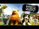 ИГРАЕМ в СИМУЛЯТОР КОШКИ   СУПЕР - КОТ ХАЛК #3 Развлекательное видео для детей. Мул...