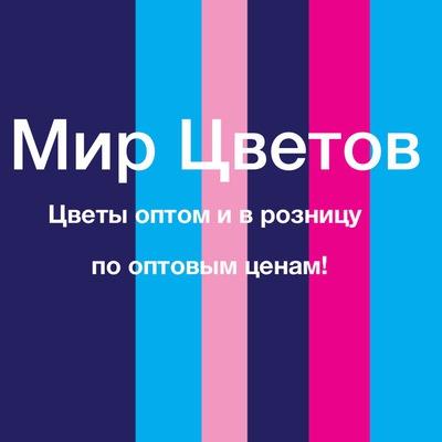 pyati-romashek-optoviy-magazin-tsvetov-v-tule-na-boldina-44