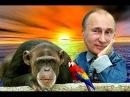 Путин и Американский сатана.Русская,народная сказка для взрослых про Обаму.Funny parody about Obama.