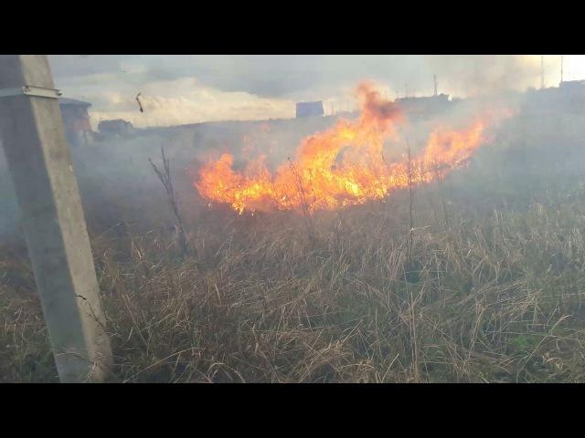 Пожар в Подсолнухах. Не жгите траву, потушить получилось только большим трудом.
