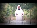 Мансур ас Салими Красивый Коран Mansour al Salimi 2016 منصور السليمي جميلة القرآن