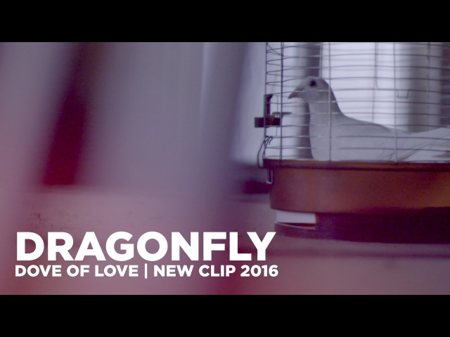 DRAGONFLY Dove of love