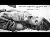 Andre Volodin &amp Karina Smirnova - Cage (Ad Brown Remix)