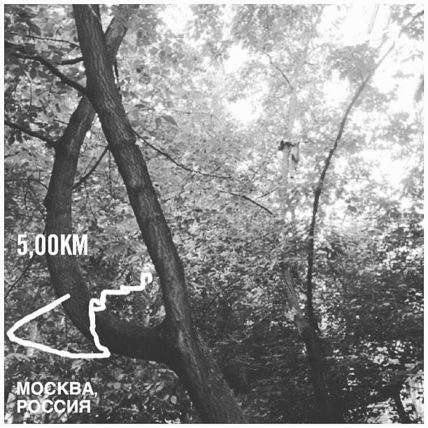 Анастасия Домбровская: Тест правой коленки: заныла после 3-го км. Дальше - без болей. На последнем км -1,15 в темпе. Видимо открылось второе дыхание, хоть и в горку. В завершение: 4мин планки (2мин на вытянутых, 2мин на локтях)