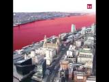 Ливерпуль - красный!
