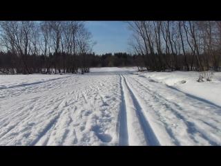 По лыжне на велосипеде.Чуприяновка.15.03.2017.Утро.