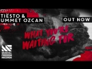 Tiësto x Ummer Ozcan What You're Waiting For - Out Now