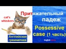 Possessive Case 1 Притяжательный падеж существительных Английский язык Грамматика