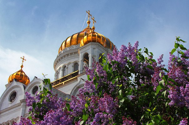 Фото храм в цветах