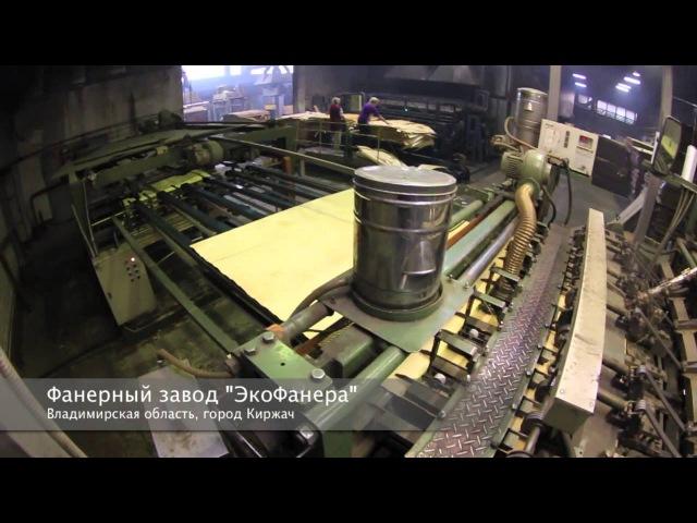 Фанерный завод ЭкоФанера Линия производства