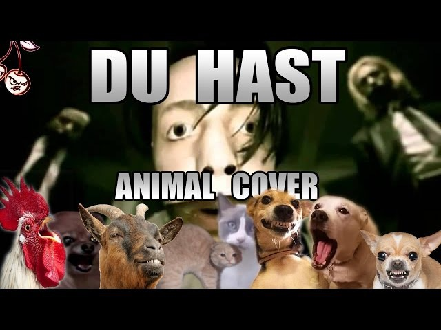 Rammstein Du Hast Animal Cover