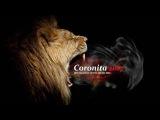 Coronita Tech House Mix 2017 (Groove Day) Dj Swat