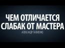 Чем отличается слабак от Мастера. Александр Палиенко.